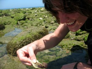 Admiring the Peruvian intertidal zone
