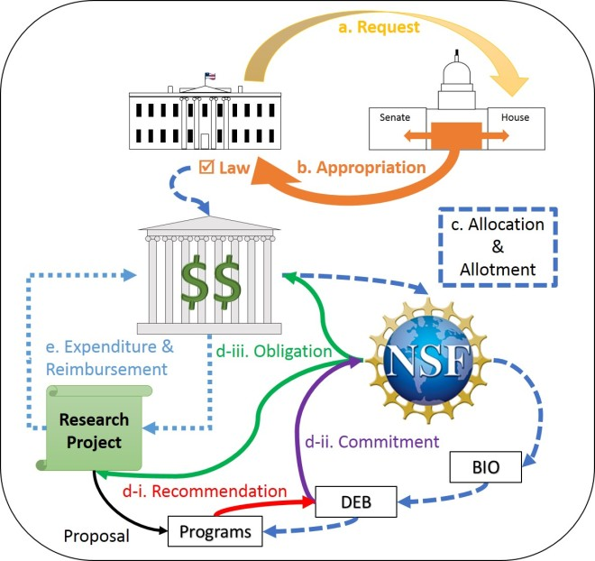 Diagram of the relationship between the annual U.S. Federal budget process and NSF merit review system.