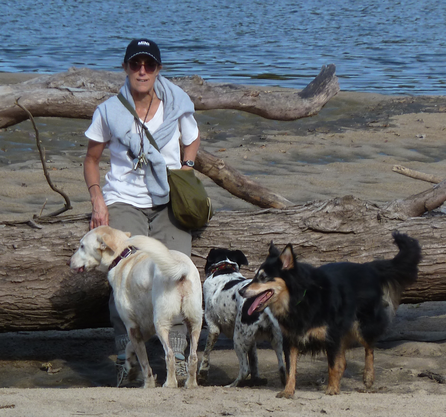 MC and dogs cropped